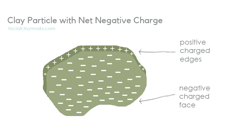 Clay Particle with Net Negative Charge