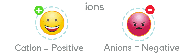 What are Cations and Anions?